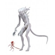 Alien Covenant - Figurine Neomorph 23 cm