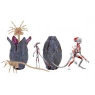 Alien Covenant - Accessoires pour figurines Creature Accessory Pack