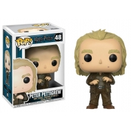 Harry Potter - Figurine POP! Peter Pettigrew 9 cm