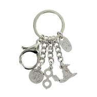 Harry Potter - Porte-clés métal Charms 6 cm