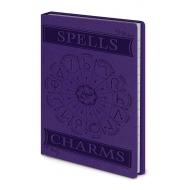Harry Potter - Carnet de notes Premium A6 Spells & Charms