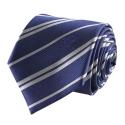 Harry Potter - Set cravate & badge Ravenclaw