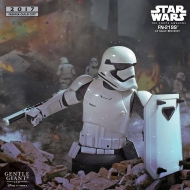 Star Wars Episode VII - Buste 1/6 FN-2199 PGM Exclusive 18 cm