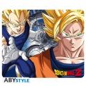 DRAGON BALL - Tapis de souris - DBZ/Goku & Vegeta