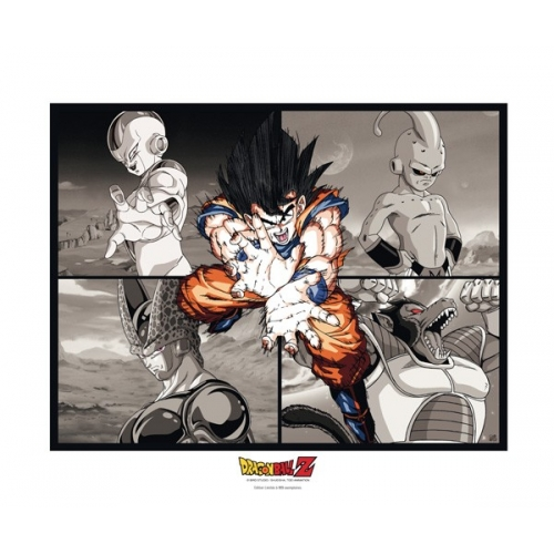 DRAGON BALL - Collector Artprint DBZ Goku