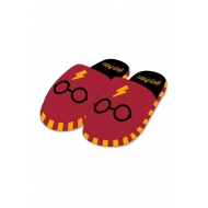 Harry Potter - Chaussons Where's