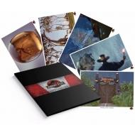 Jurassic Park - Set 5 lithographies 35 x 28 cm