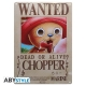 One Piece - Plaque métal Chopper Wanted