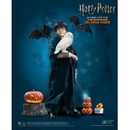 Harry Potter - Figurine 1/6 My Favourite Movie (Child) Halloween Limited Edition 25 cm