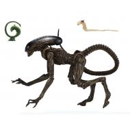 Alien 3 - Figurine Ultimate Dog  23 cm