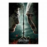 Harry Potter - Puzzle Harry vs Voldemort