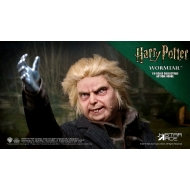 Harry Potter - Figurine My Favourite Movie 1/6 Wormtail (Peter Pettigrew) 30 cm