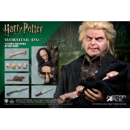 Harry Potter - Figurine My Favourite Movie 1/6 Wormtail (Peter Pettigrew) Deluxe Ver. 30 cm