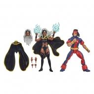 Marvel Legends - Pack 2 figurines Storm & 's Thunderbird 15 cm
