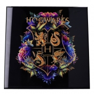 Harry Potter - Décoration murale Crystal Clear Picture Hogwarts Fine Oddities 32 x 32 cm