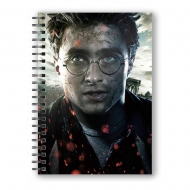 Harry Potter - Cahier effet 3D  Face