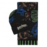 Harry Potter - Set bonnet & écharpe Hogwarts Houses Colored